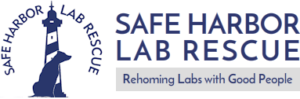 Graphic Design For Safe Harbor Lab Rescue