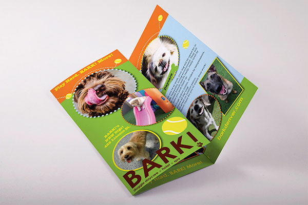 Bark TriFold Brochure