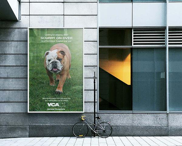 VCA Poster Design